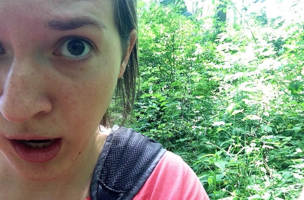 I Found Michigan's Abandoned Dinosaur Park