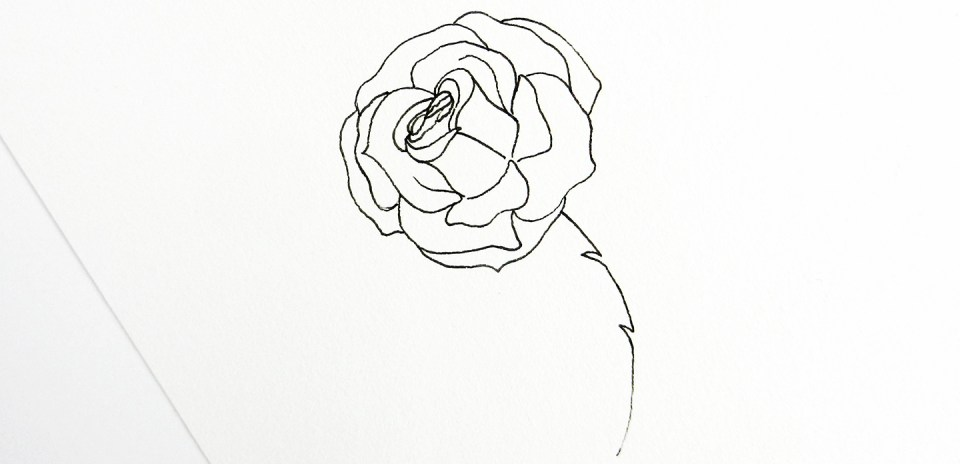 how to draw a good rose