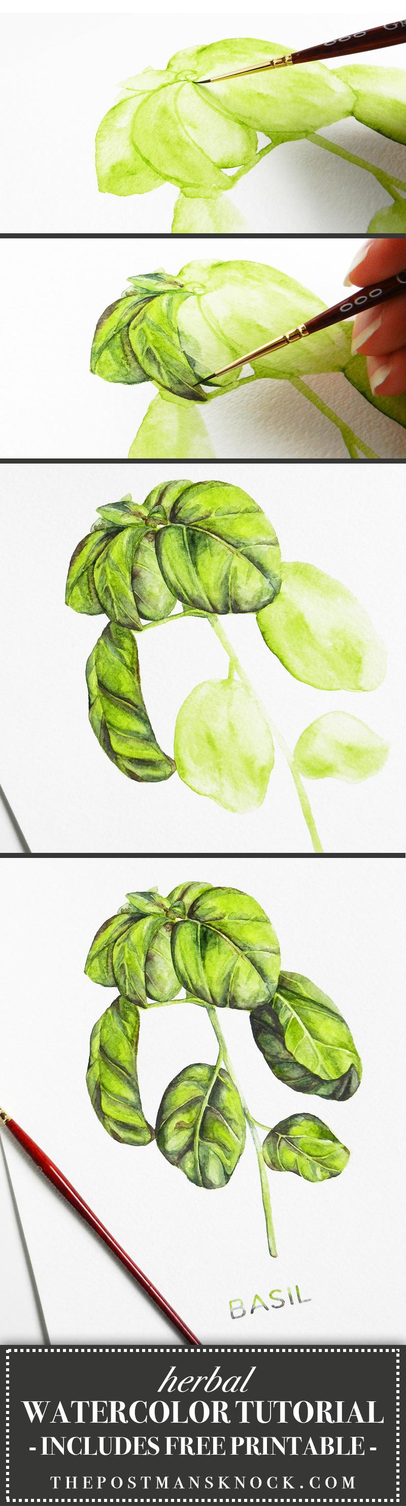 Herbal Watercolor Tutorial + a Free Printable | The Postman\'s Knock