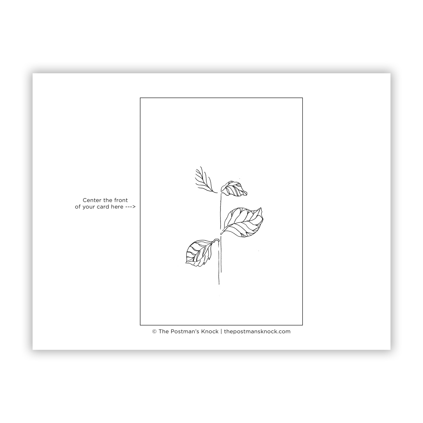 Stem And Leaves Template
