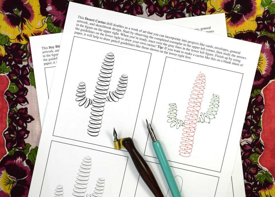 Not Your Average Calligraphy Drills: Garden Edition | The Postman's Knock