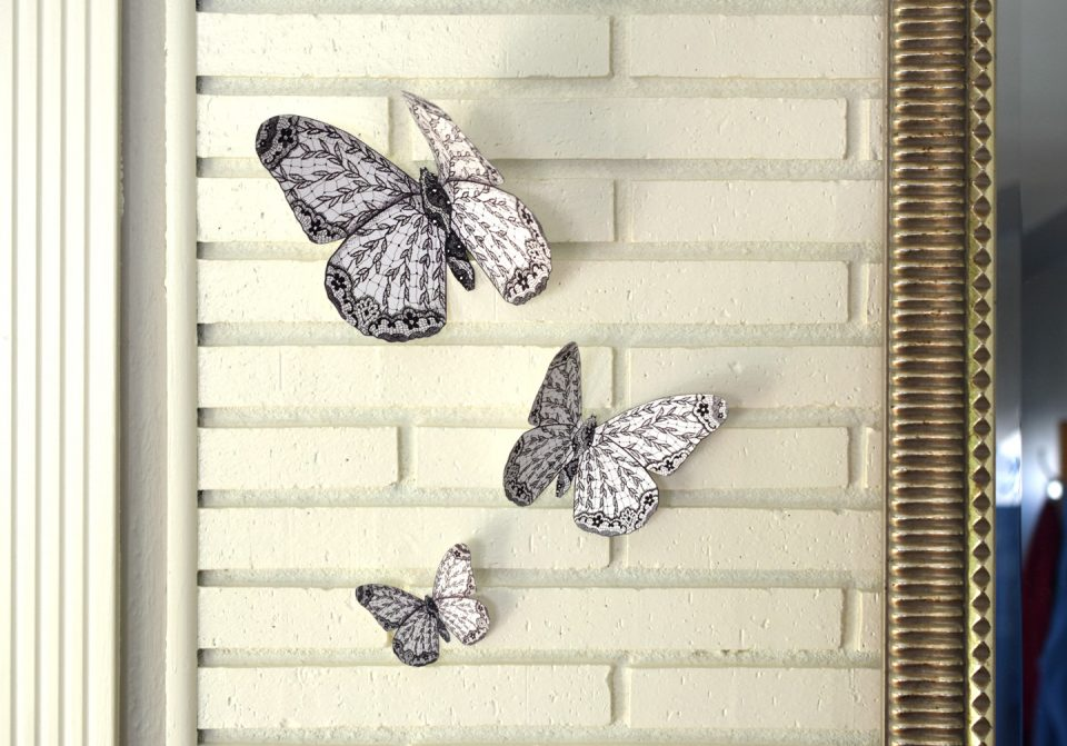 Butterfly Wall Art | The Postman's Knock