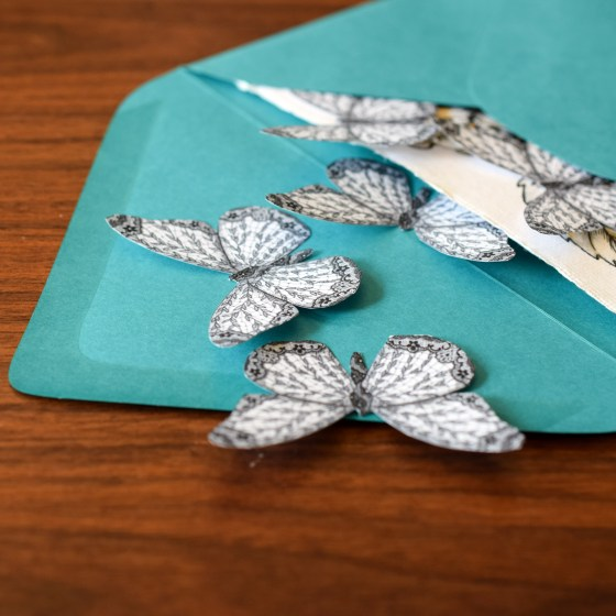 """Use the tiny butterflies as envelope """"confetti""""! This confetti is elegant and clean."""