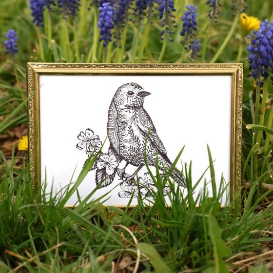 Framed Printable Henna Bluebird Illustration