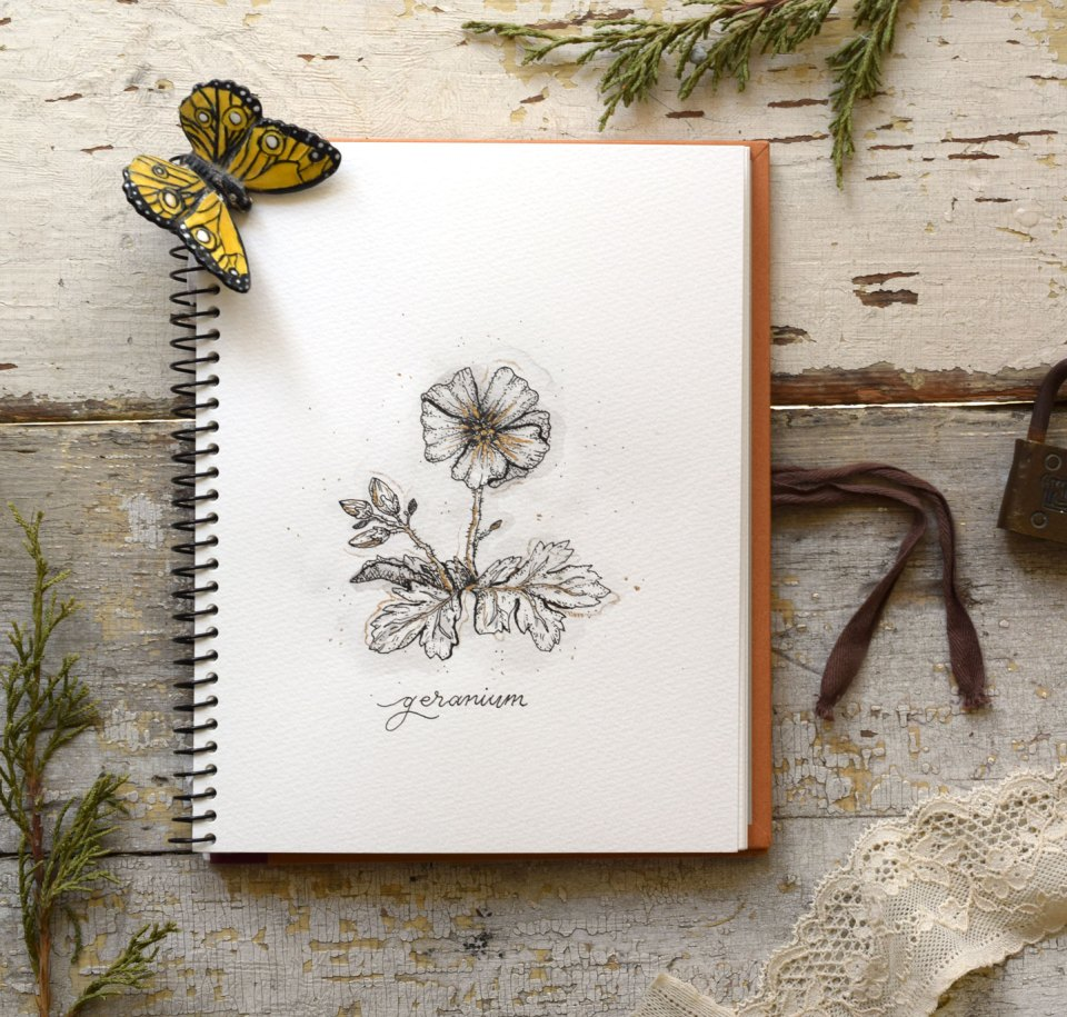 How to Draw Flowers Part 1: Geraniums
