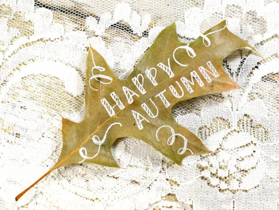 Step 2: Happy Autumn Leaf Motif