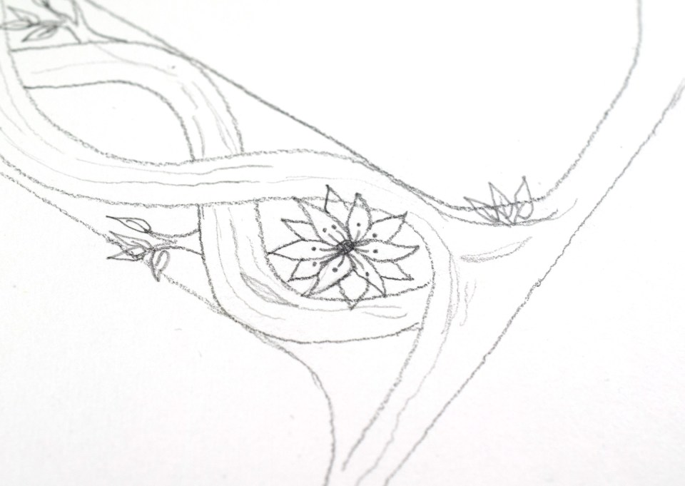 Drawing flower 1: Step 3