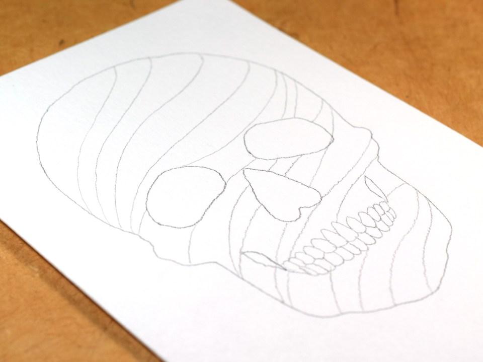 Calligraphy Prepped Skull