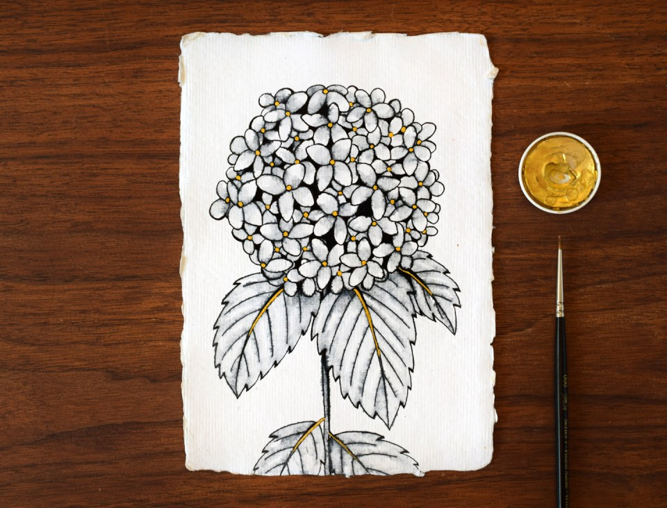 Adding Gold Watercolor to the Hydrangea Illustration