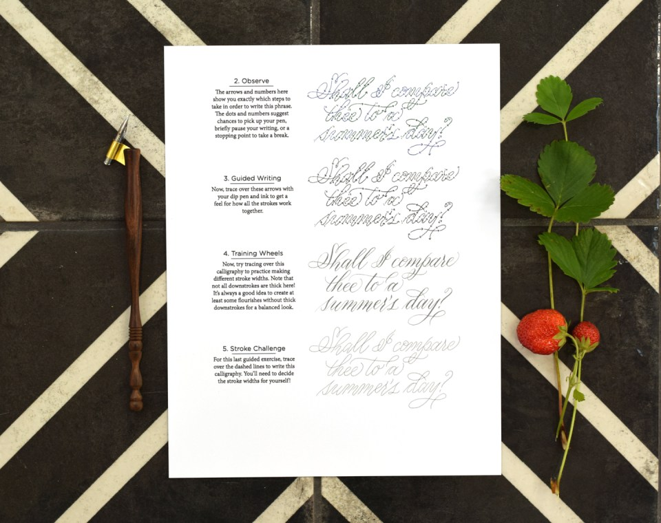 Sonnet 18 Calligraphy Quote Worksheet