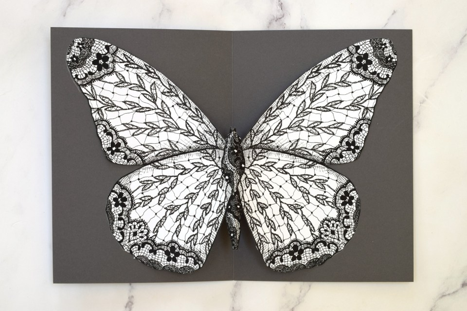 Illustrated Lace Butterfly centered in a card