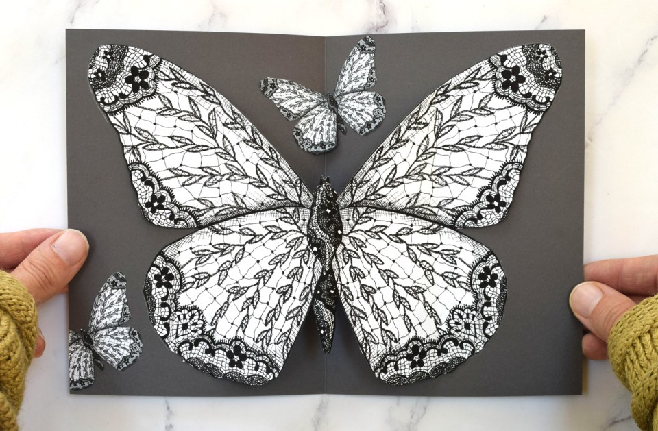 Butterfly illustrations on a card