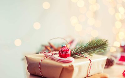 Four Holiday Gift Ideas from The Potentiality Team