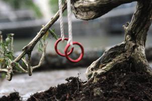 London2012 Olympics Pothole Garden gymnastic rings steve wheen potholegardener CU