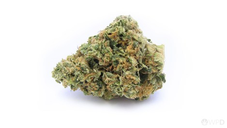 wpd-pineapple-express