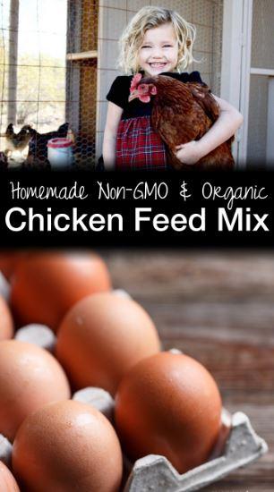 twenty-five-pound-organic-and-non-gmo-chicken-feed