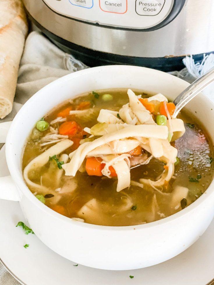 Easy Instant Pot Classic Chicken Noodle Soup
