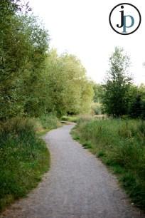 Love this Trail