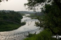 Chitwan (11)