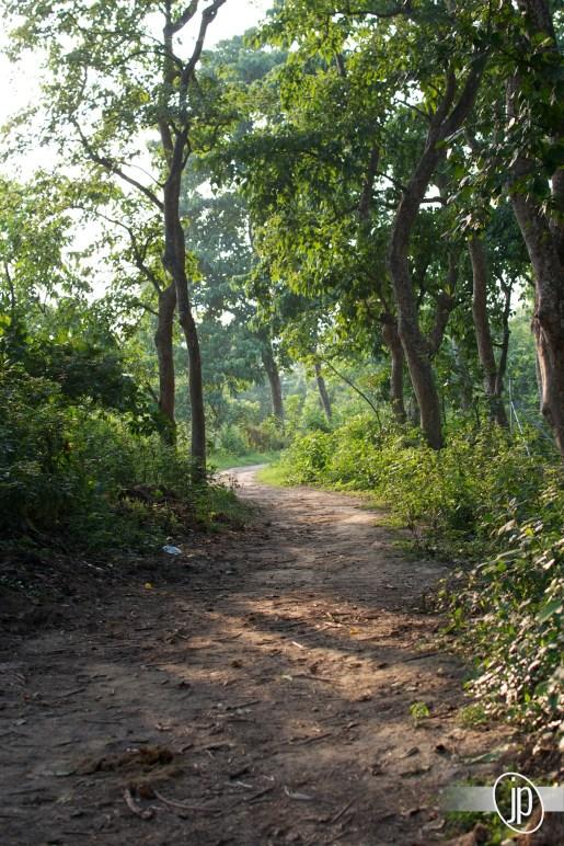 Chitwan (13)