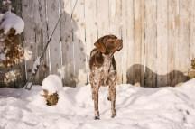 Oregon Snow Photography