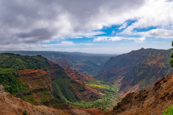 Looking down the Waimea Canyon with lush greenery and red earth