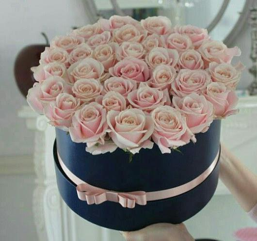 flowers-to-ana