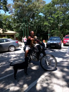 A dog riding a motorcycle in Rio.