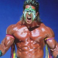 "Remembering the Ultimate Warrior Getting PWN'D by Undertaker and Jake ""The Snake"" Roberts..."