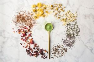 circle of rainbow herbs