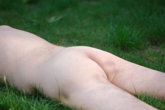 PS Grass (1)