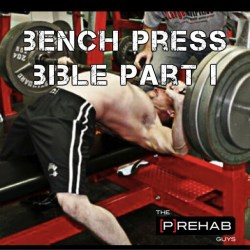 bench press bible