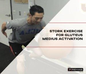 stork exercise gluteus medius activation improve bridge exercise