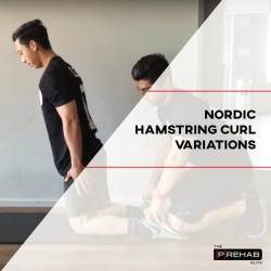 Nordic hamstring curl variations IG