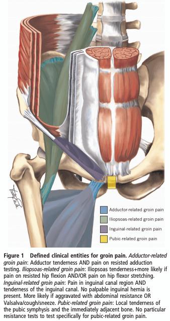 Hip Flexor Strain Rehab