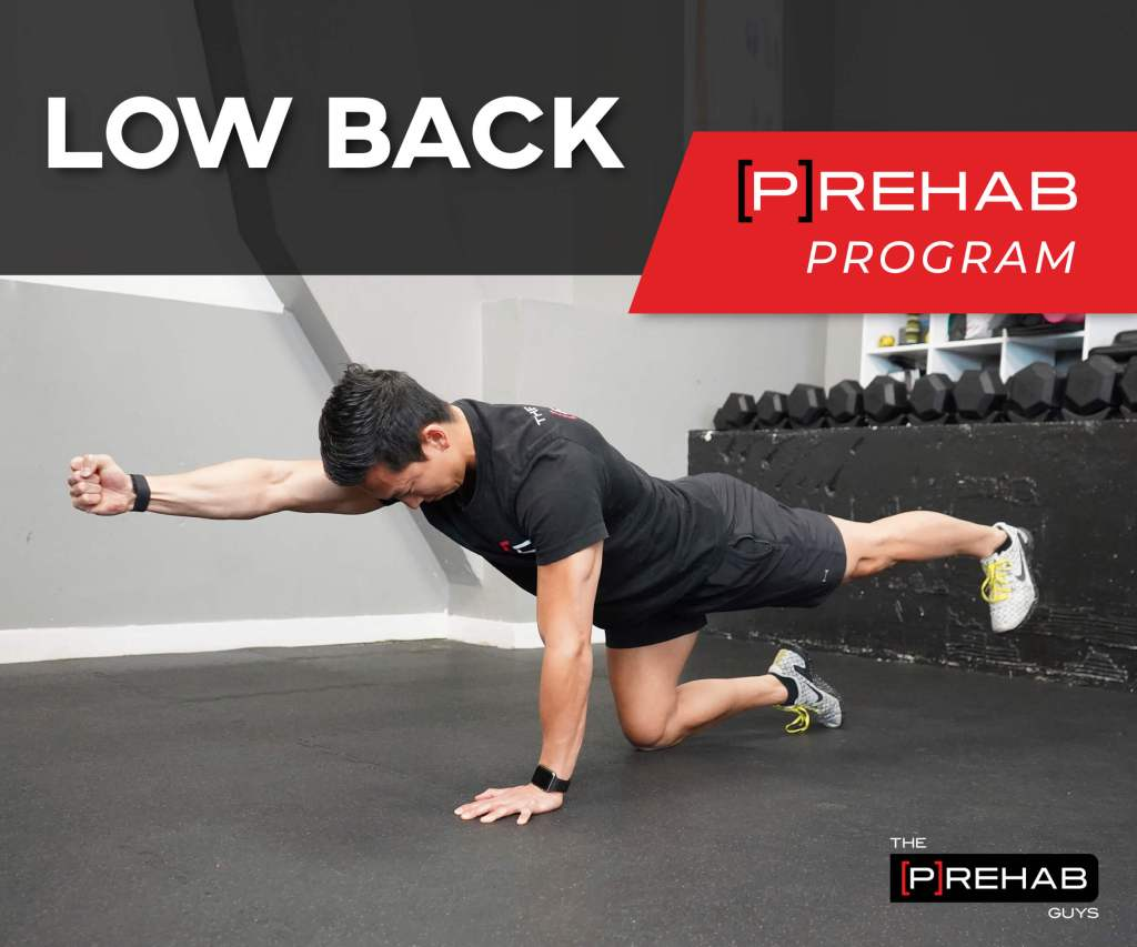 Low Back [P]Rehab Program