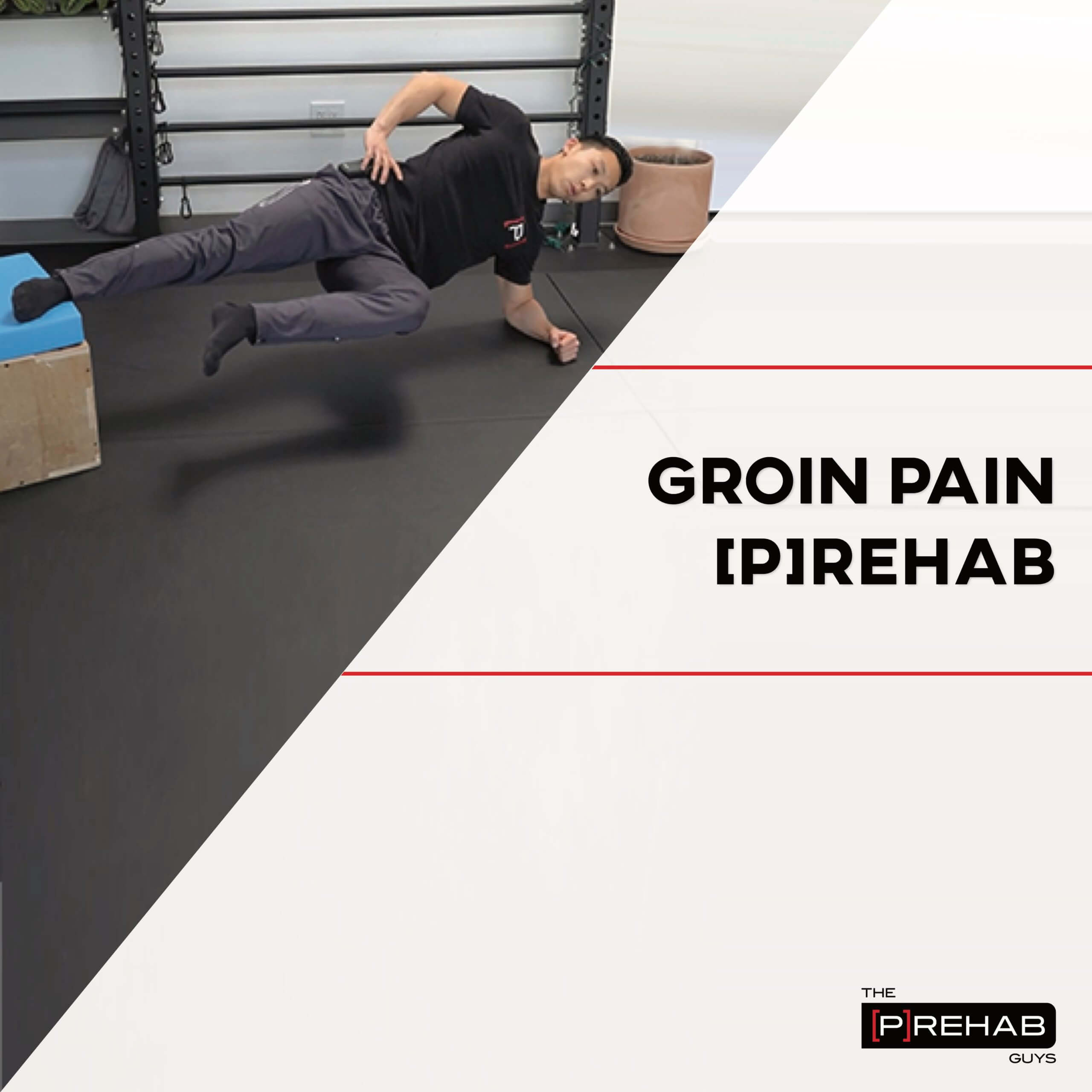 groin pain phase II workout the prehab guys
