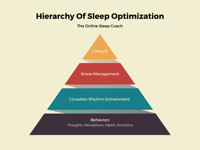 hierarchy sleep optimization prehab guys