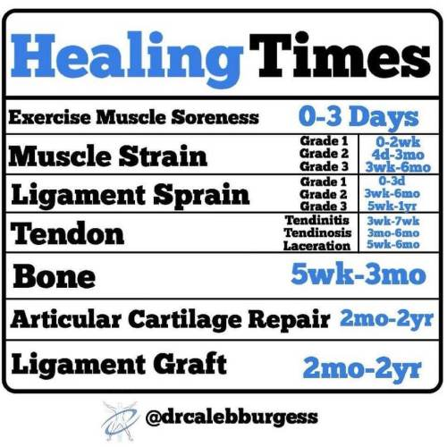 what you need to know about tissue healing running after a bone stress fracture the prehab guys