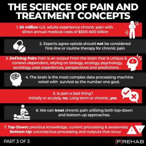 science of pain all in your head the prehab guys treatment concepts