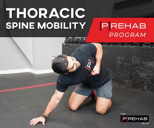 thoracic mobility overhaul program the prehab guys