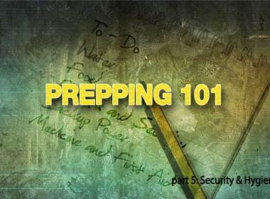 This is the fifth in a series for the beginning prepper on how to get started Prepping. In part one of this series we covered defining your priorities and making sure you have a sufficient store of water. The second article covered planning for long-term food storage and selecting the best firearm for self-defense. In the third installment, we dealt with financial security and having appropriate medical supplies to treat basic injuries. The fourth installment begins to discuss backup power options and how your family can be ready with lifesaving power if the grid goes down.