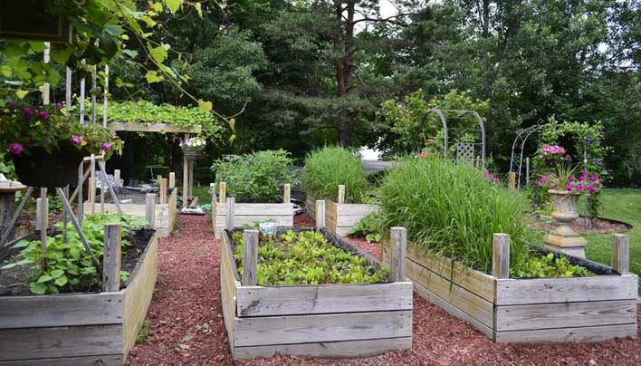 If you've been intending to become a gardener but aren't quite sure yet how to get started, this how-to guide is for you.