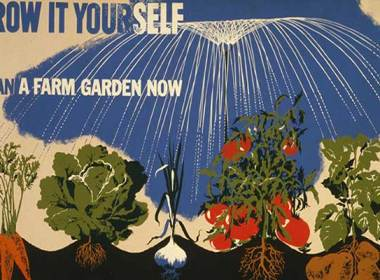 Eventually, however, the government endorsed household and community food plots and supplied gardening literature. The USDA also issued a 20-minute film to promote and train people how to plant victory gardens.The call to plant a Victory Garden was answered by nearly 20 million Americans during World War II. Those backyard plots produced up to 40 percent of all that was consumed. When prosperity resumed, however, many gardens were abandoned.