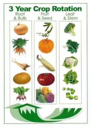 3-step crop rotation - anybody see the problem-problems