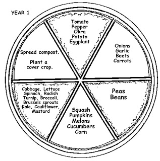 6-stage crop rotation plan