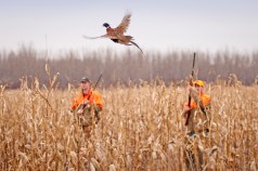 With some school systems still on the 9/3 year, mixed with the year-round school systems, with summer temps still in full swing and fall harvest not yet started it is hard to believe that the Fall hunting seasons start in just ten (10) days.