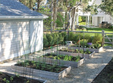 There's actually only a couple benefits specific to raised beds, even versus till systems.
