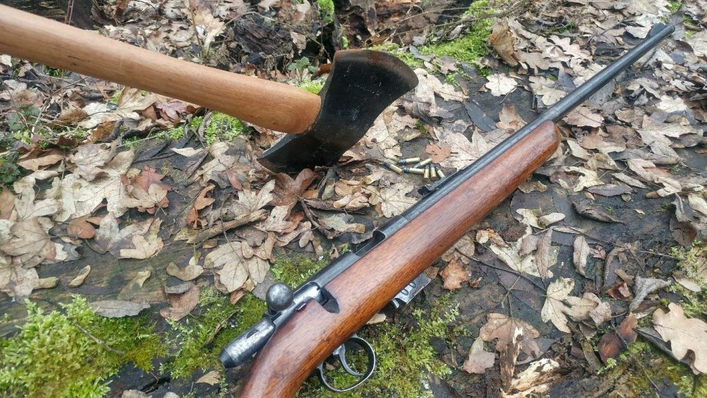 .22 for hunting small game and a double bit axe are great bushcraft tools.