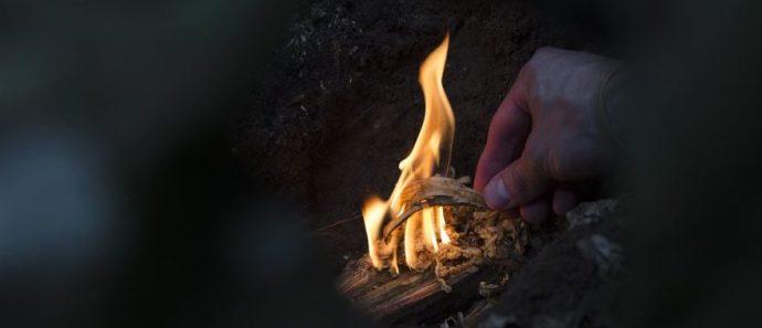 survival fires